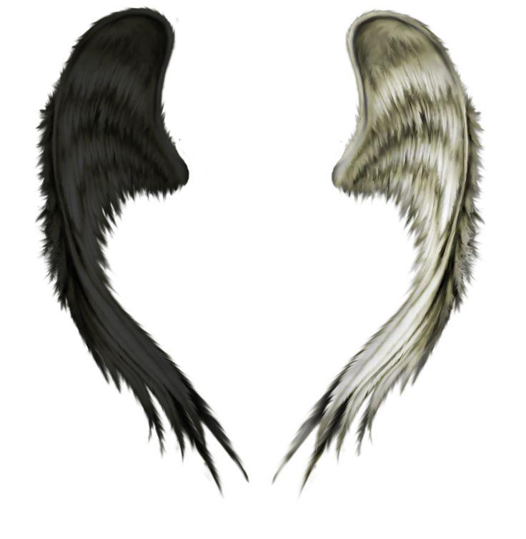 Рваные крылья картинки