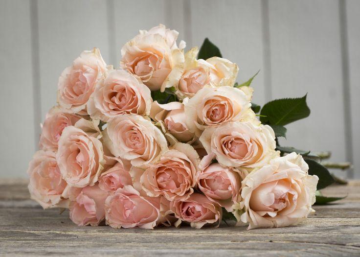 Winactie Gloss 51 – boeket rozen