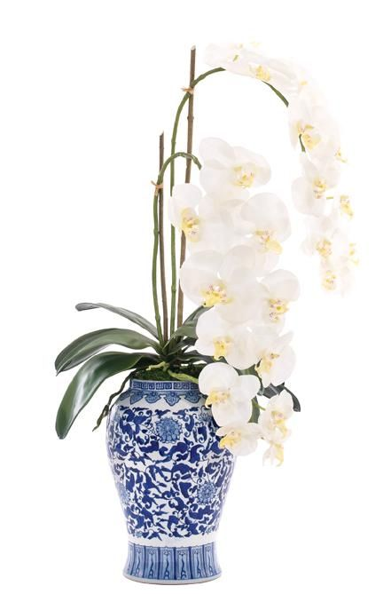 Natural Decorations Inc Orchid Phalaenopsis White