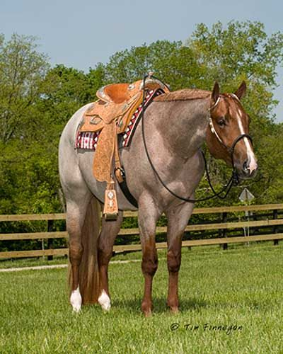 VS Code Red. SO gorgeous. I want one of his babies!!!