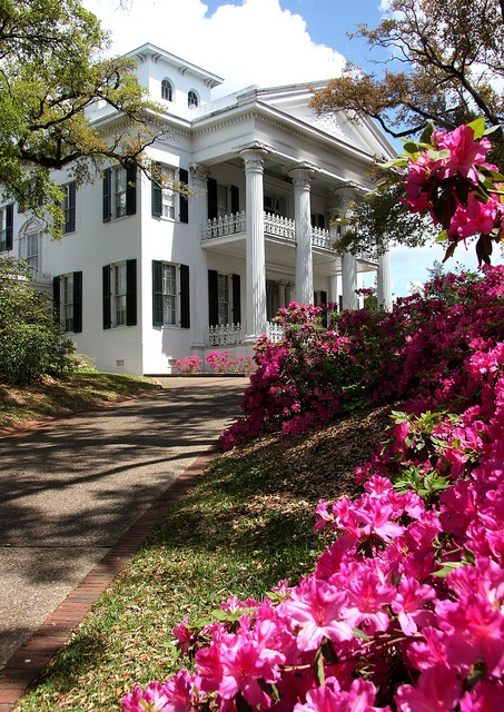 Annual Spring Pilgrimage is right around the corner! Hoop skirts, azaleas and antebellum home tours, we're ready for you! (Stanton Hall, Natchez, Mississippi)