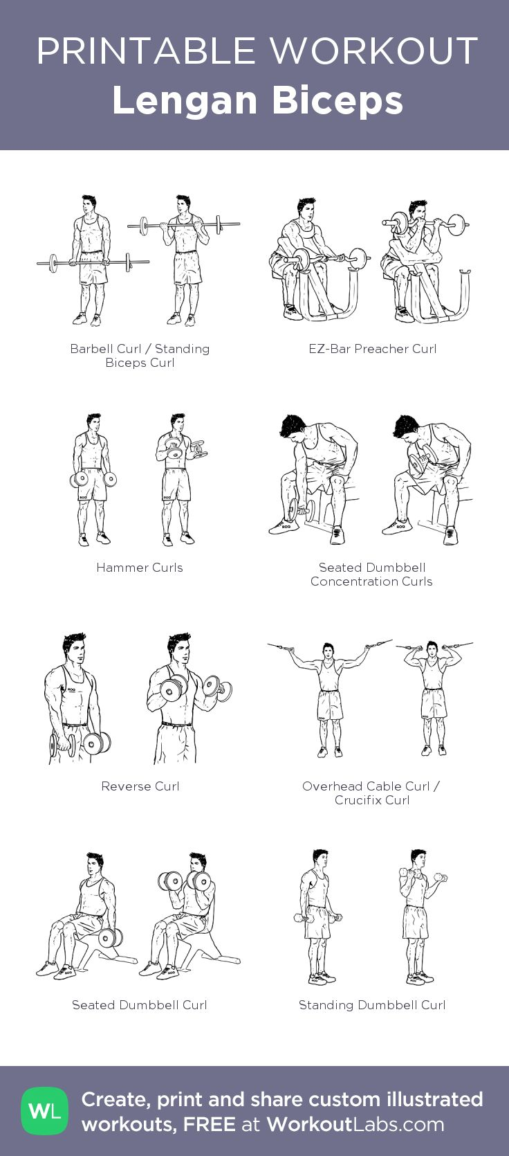 Lengan Biceps –my custom workout created at WorkoutLabs.com • Click through to download as printable PDF! #customworkout