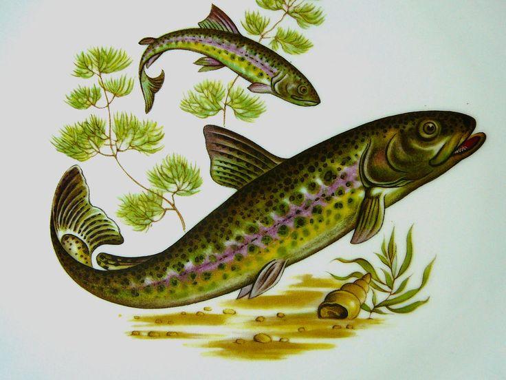 Wunsiedel Bavaria Porcelaine Teller Fisch mit lila Streifen Shabby Vintage