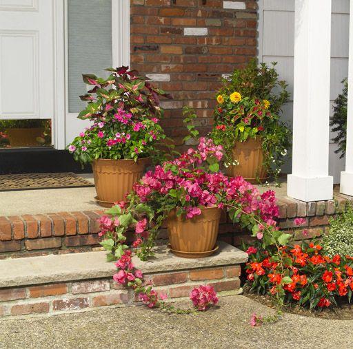 M s de 1000 ideas sobre jard n de helechos en pinterest - Fotos de jardines decorados ...