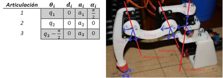 How to make a hexapod robot, with three degrees of freedom on each leg, walk. | Robots en la UPV