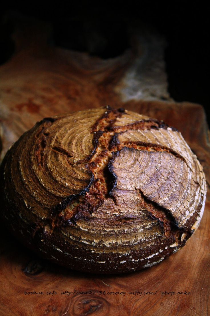 カンパーニュ ガレットデロワ バゲット 自家製酵母手作りパンレシピ ... [ ライ麦90%のライ麦パン ] /ライ麦ルヴァン液種