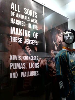 South African Rugby Museum - Cape Town Tourism  www.mydentaltourism.com