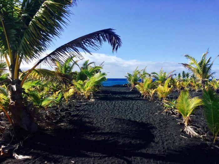 "4. <a href=""http://www.onlyinyourstate.com/hawaii/new-kaimu-beach-hi/"" target=""_blank"">Kaimu Black Sand Beach</a>"