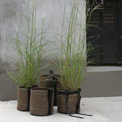 Stilinspiration » Trädgård