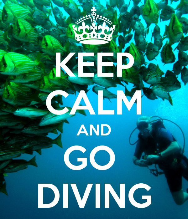 Keep calm and go diving #Corcovado #DrakeBay #CostaRica