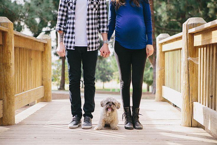 ¿Estás #embarazada y tienes un #perro en casa? Te contamos cómo debes preparar a tu #mascota ante la llegada de tu hija o hijo.
