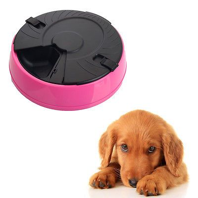 6 Meal Programmable Timer Auto Tray Pet Dog Cat Feeder / Water Tray / Bowls Pink