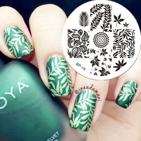 $2.99 Leaves Theme Nail Art Stamp Template Image Plate BORN PRETTY BP19 - BornPrettyStore.com