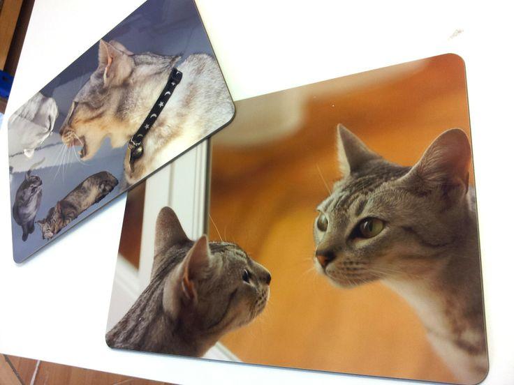 Tovagliette da colazione con un fotomontaggio dei propri gatti.. proprio carino!