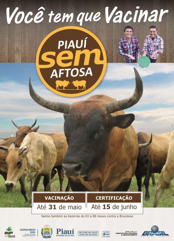 Anúncio: Cartaz  Cliente: Governo do Piauí Campanha: Piauí Sem Aftosa (2017)