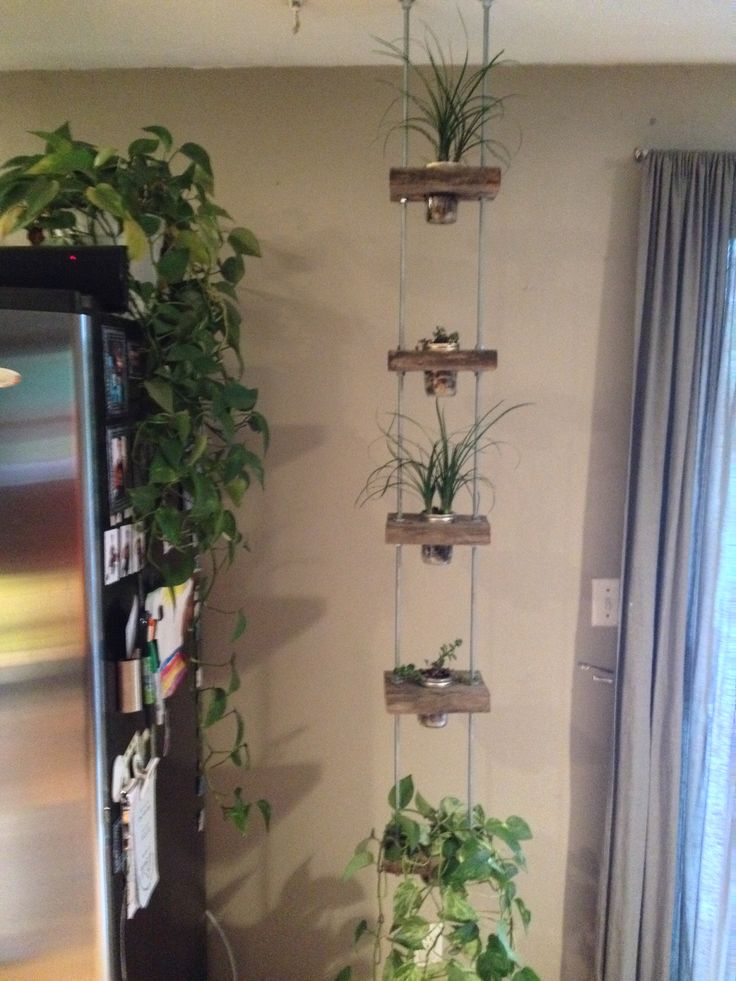 12 best images about Plant Satnd on Pinterest | Mouths ... on Hanging Plants Stand  id=99339
