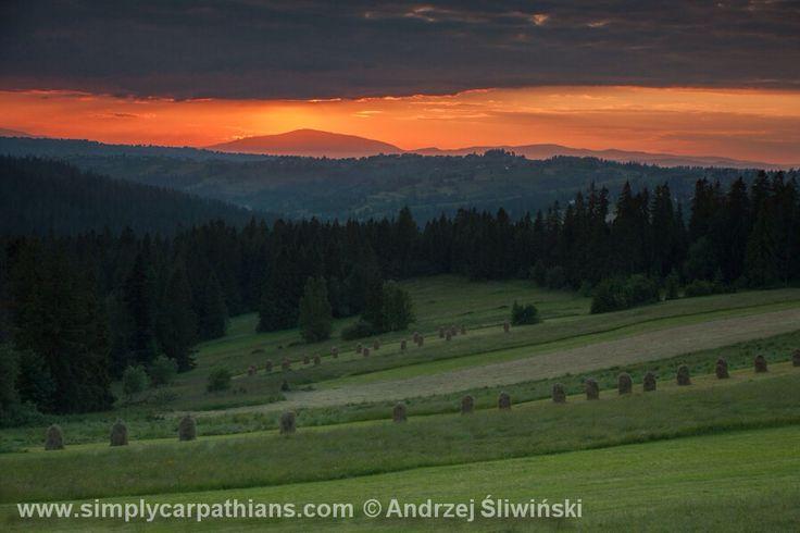 Babia Gora in the evening light... www.simplycarpathians.com