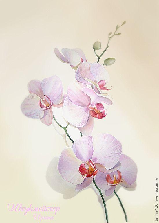 """Купить Акварель """"Хризантемы"""" - хризантемы, япония, золотистый цвет, осень, желтый, бордовый, осенний, цветы"""