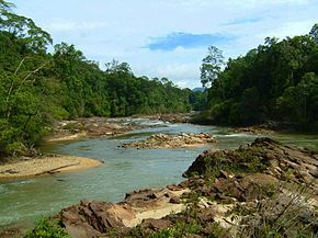 Endau-Rompin National Park - Wikipedia, the free encyclopedia
