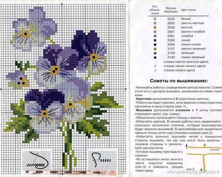 Gallery.ru / Фото #37 - Bratki/Pansy1 - sabka