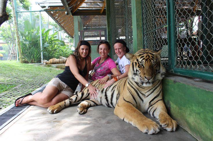 Tiger Kingdom in ตำบลกะทู้, ภูเก็ต