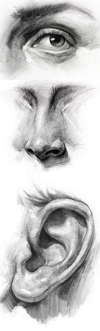 Stan Prokopenko. ear, eye, nose