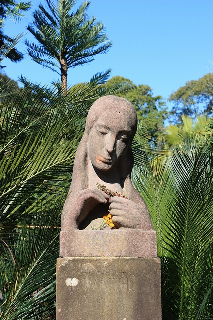 'I Wish' taken at Royal Botanic Gardens, Sydney, Australia
