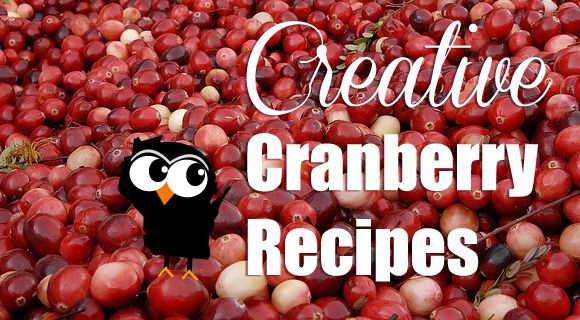 Cookin Canuck Apple Cranberry Sauce With Orange Crystallized | Raws ...