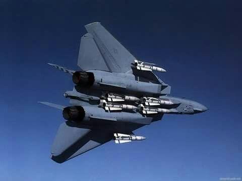 F-14 Tomcat & missiles Phoenix