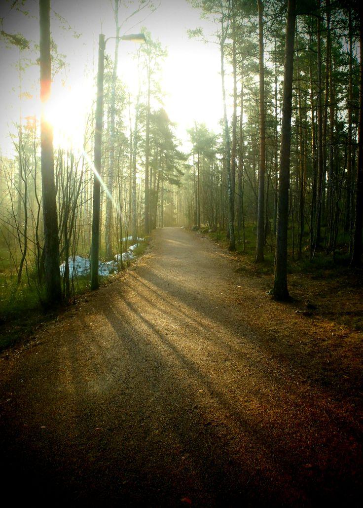 morning dust in Espoo, Finland