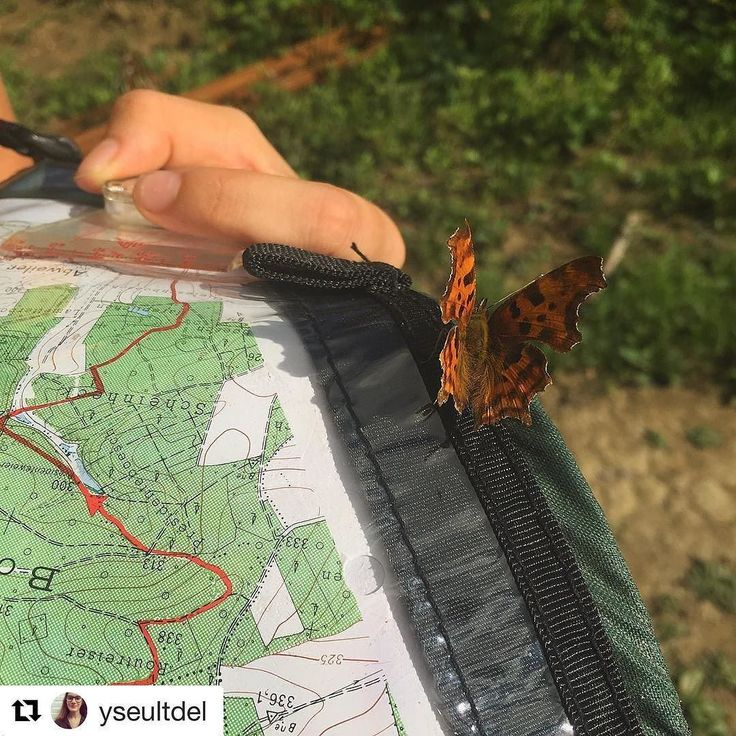 #Repost @yseultdel (@get_repost)    Quand un papillon se pose sur la carte   .  .  .  #luxembourg #paysage #love #summer #randonnée #igersluxembourg #photography #travel #style #instagood #happy #art #design #picoftheday #instadaily #instalike #sky #route #photooftheday #fun #follow #weekend #photographer #beautiful #instatravel #trip #travelgram #instagood #traveling #vacation http://ift.tt/2v2SCMo #1/2heure #Lille #balade