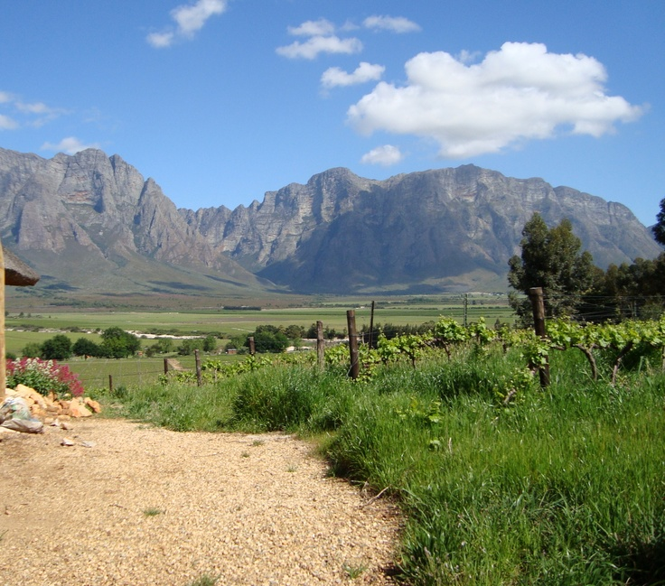Worcester - South Africa