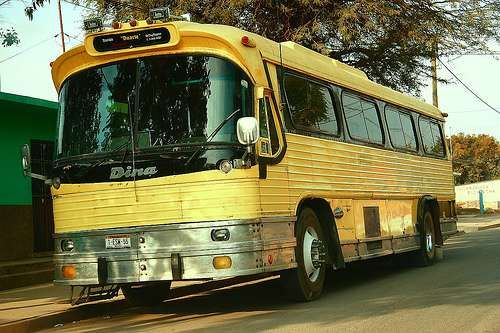 Flexible Coach discontinued this model in the mid '60s. However it continued to be manufactured in Mexico by Dina under license with Flexible Corporation for another 20 years.