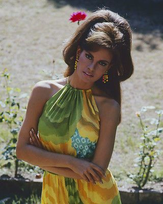 RAQUEL WELCH BIG HAIR AND COLORFUL DRESS GLAMOUR POSE 8X10 PHOTO
