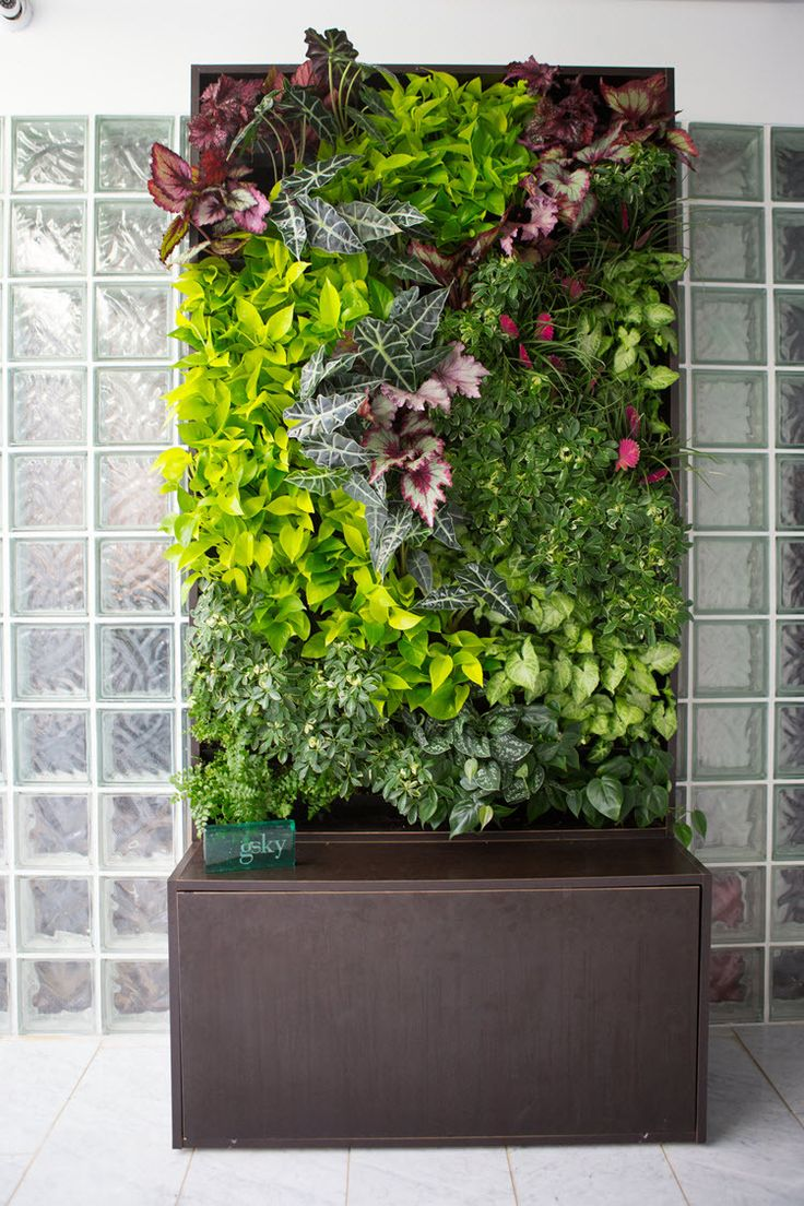 121 best vertical gardening images on pinterest for Vertical garden wall systems