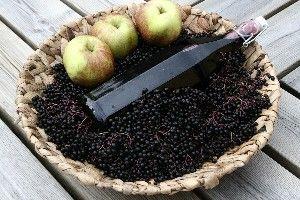 Hyldebærsaft m. Æble