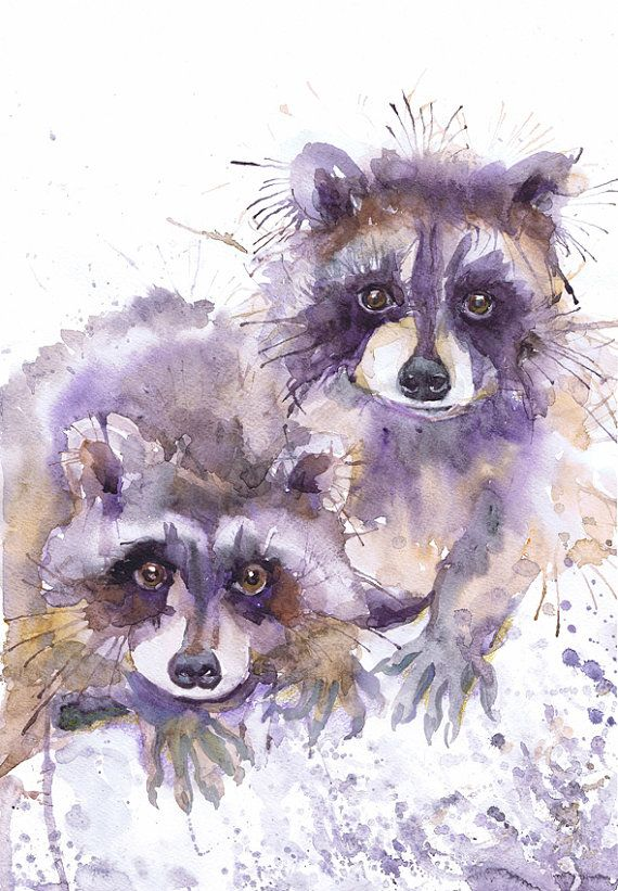 Raccoon painting watercolor, valentine art, fine art prints, forest animals , racoons, woodland nursery art, watercolour,  valentines gift