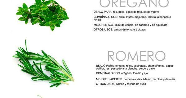 Guia de Hierbas para Cocinar | ideas! | Pinterest