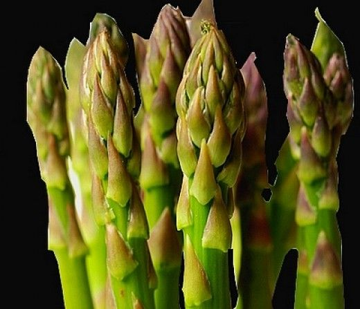 Asparagus has outstanding health benefits being rich in fiber, Vitamins and minerals and being so versatile in its culinary uses.