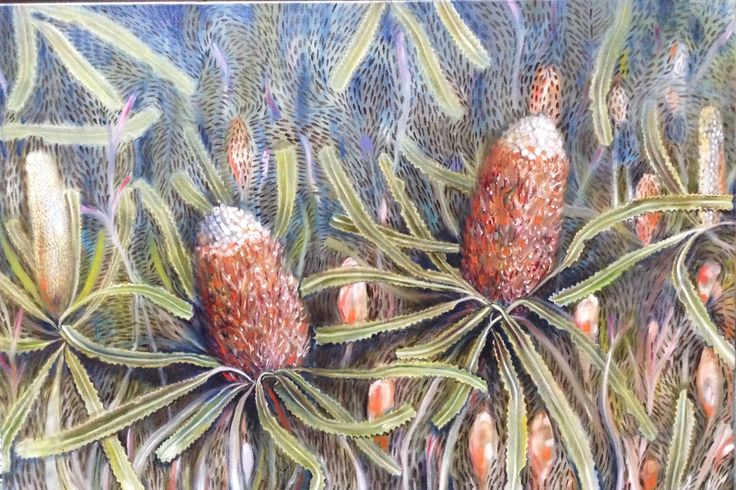 Banksia prionotes. Oil on linen.