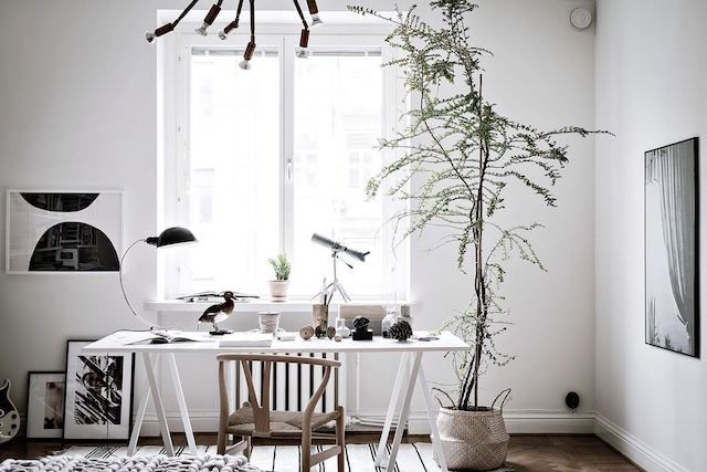 Light filled workspace in a lovely Swedish space in white and wood (with lots of plants)