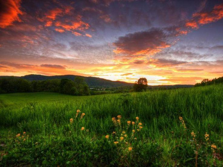 Summer Sunset Wallpaper-6
