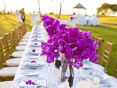 356 best HAWAII WEDDINGS images on Pinterest Hawaii Maui