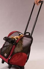 The Roll Around Pet Carrier is an approved airline pet carrier (small and medium only) that makes traveling with your pet easy with this 4 in 1 design. It's a pet carrier, pet car seat, pet backpack, and pet bed - all in one! The Roll Around is a high quality wheeled transport that lets you take your pet almost anywhere you go. This soft-sided, carrier is easy to pull. Fabric is a very durable nylon micro-fibre quilt. Used as a backpack it converts easily and has an ergonomically-contoure...