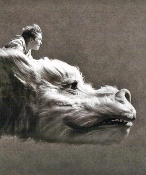never ending story>>> a true definition of my childhood.