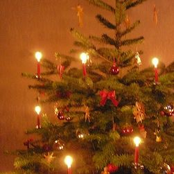 german christmas i loved the candles on our real fir tree they were only lit onceon christmas eve before christkindl brought our gifts - German Christmas Tree