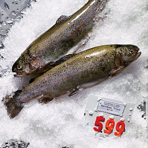 Guide to sustainable fis. 13 great fish to choose now | Farmed rainbow trout | Sunset.com