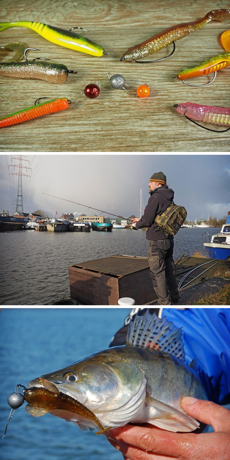 Mit dem Cheburashka Rig auf Zander und Barsch angeln | Fishing with the cheburashka rig for zander and perch
