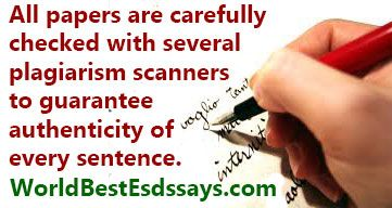 Sentence with plagiarism