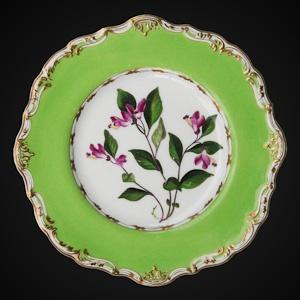 Copeland & Garrett Antique English Porcelain (1825 - 1845)
